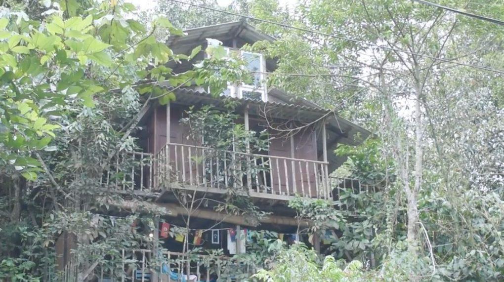 casa-del-arbol-johor