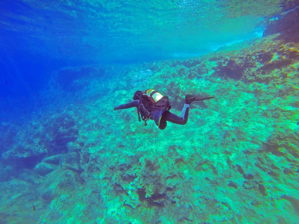 Buceo en la ISLA PULAU PEMANGGIL de Malasia lleno de arrecifes de corales y fauna marina