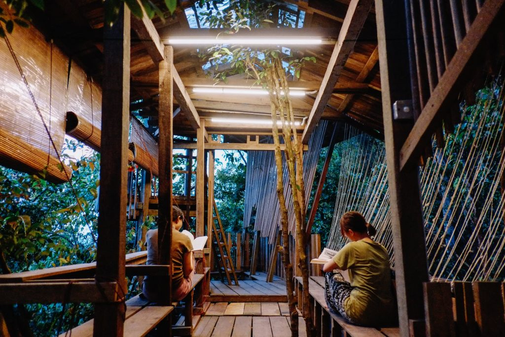 Rain Forest Tree House